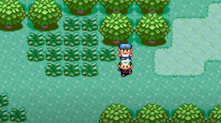 Pokémon Kaizo Emerald screenshot