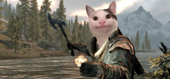 Cat photoshopped over face of Skyrim dragonborn