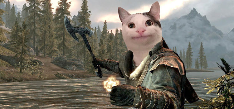 100+ Funniest Skyrim Memes Made For True TES Fans
