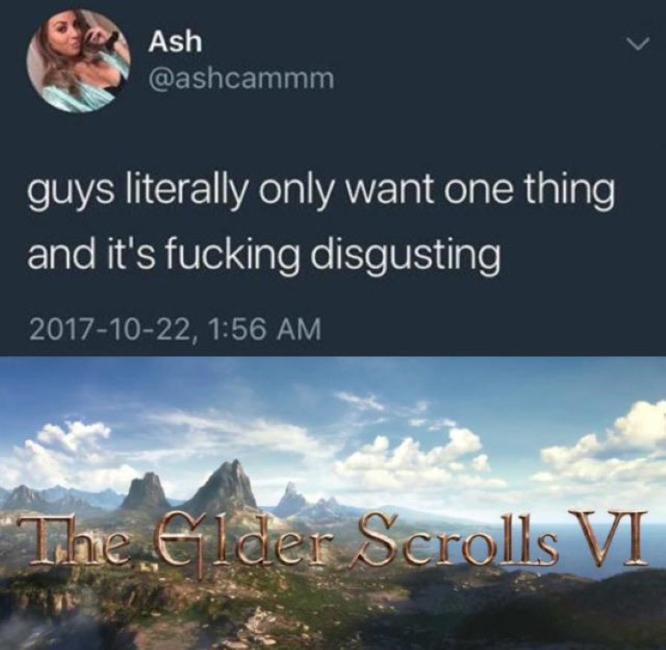Guys want one thing and its disgusting: Elder Scrolls 6