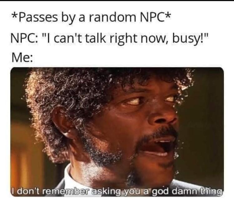 Passes by a random NPC I cant talk Im busy, Skyrim meme