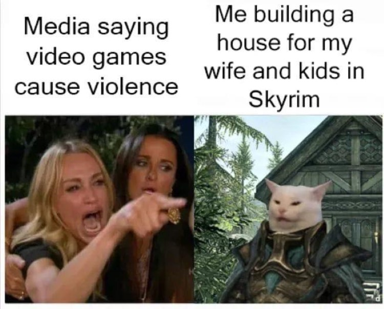Media saying games cause violence, Me building a house for my wife in Skyrim