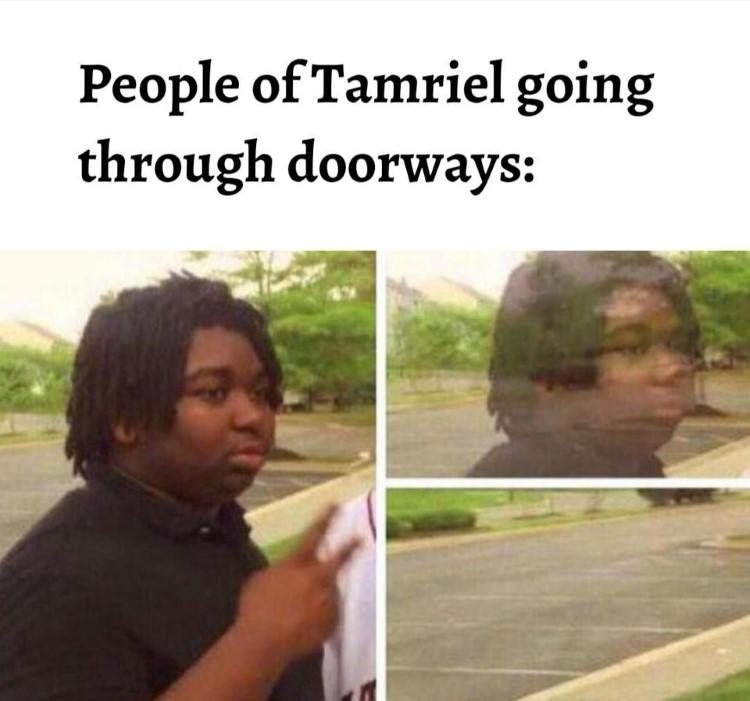 People of Tamriel going through doorways disappear meme