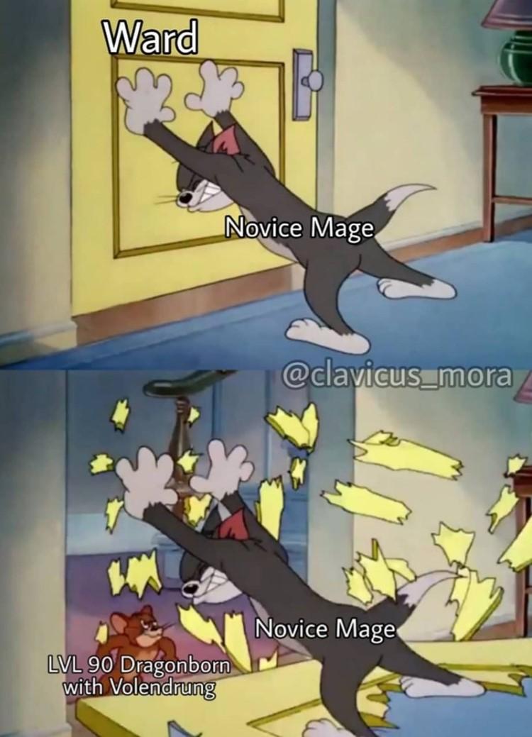 Ward vs Novice Mage meme