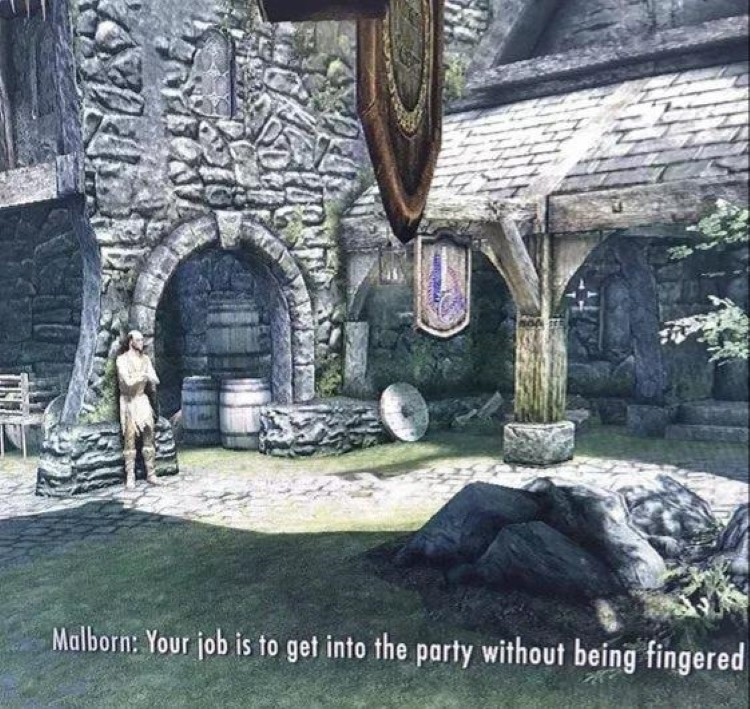 Your job is to get into the party without being fingered, dialogue from Skyrim meme