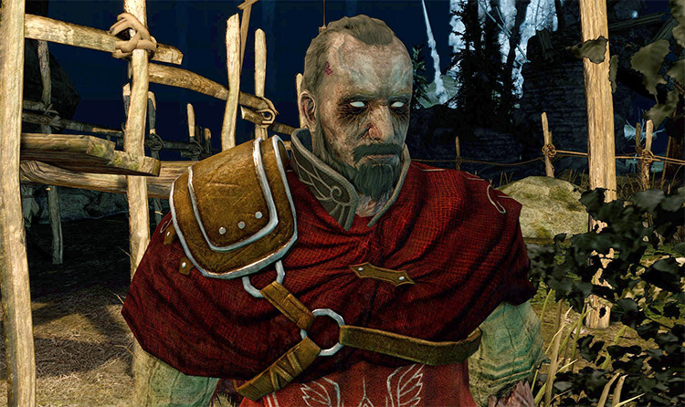 Fleshy Hollows Dark Souls 2 Mod