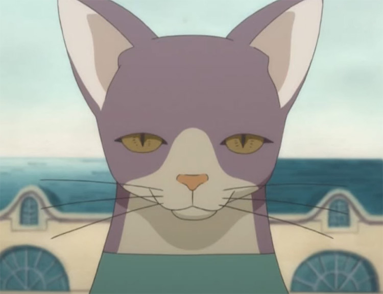 Neko sensei Princess Tu Tu Anime Screenshot