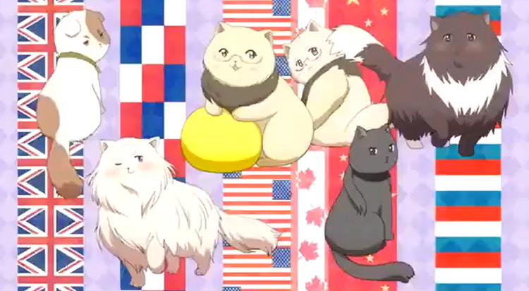 Nekotalia Hentalia Anime Screenshot
