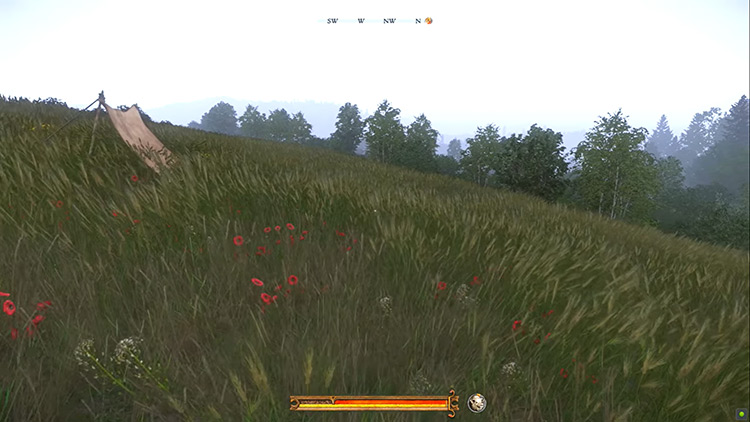 Easy To See Herbs Kingdom Come Deliverance Mod