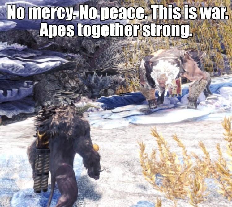 Monster Hunter, no mercy meme