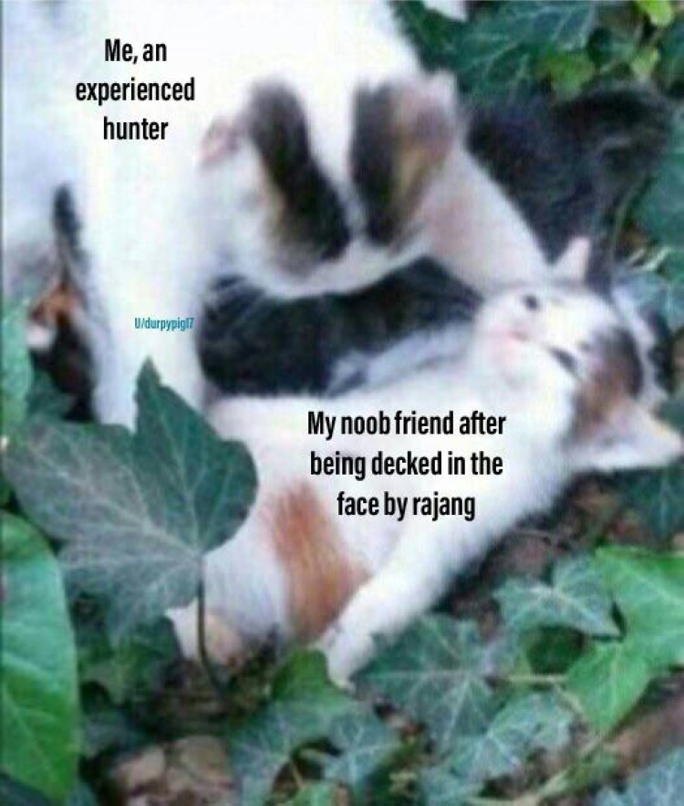 My as an experienced hunter meme