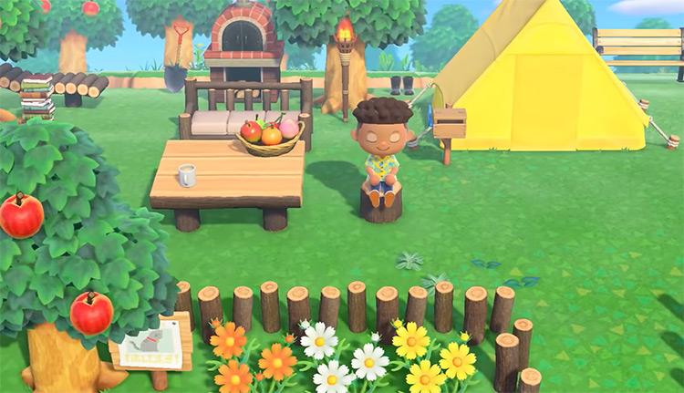 Animal Crossing: New Horizons (2020) Gameplay