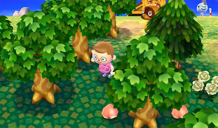 Animal Crossing: New Leaf (2012) Gameplay