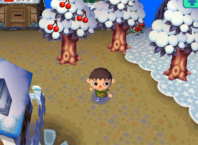 Animal Crossing: Wild World (2005) Gameplay