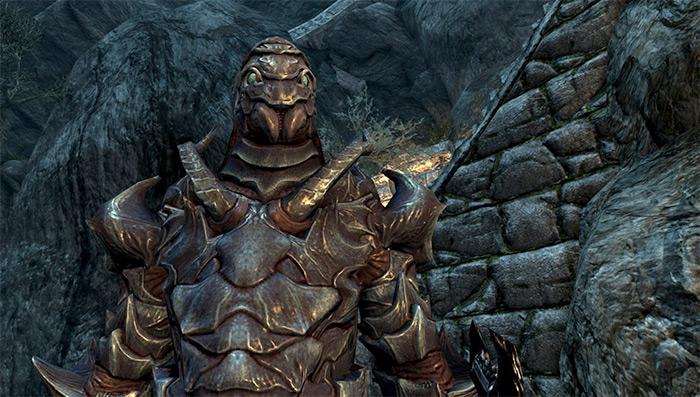 Falmer Hardened Armor in Skyrim
