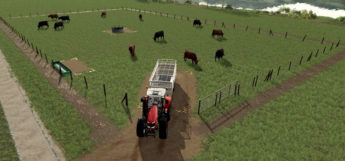 Cattle Pasture Mod for FS19