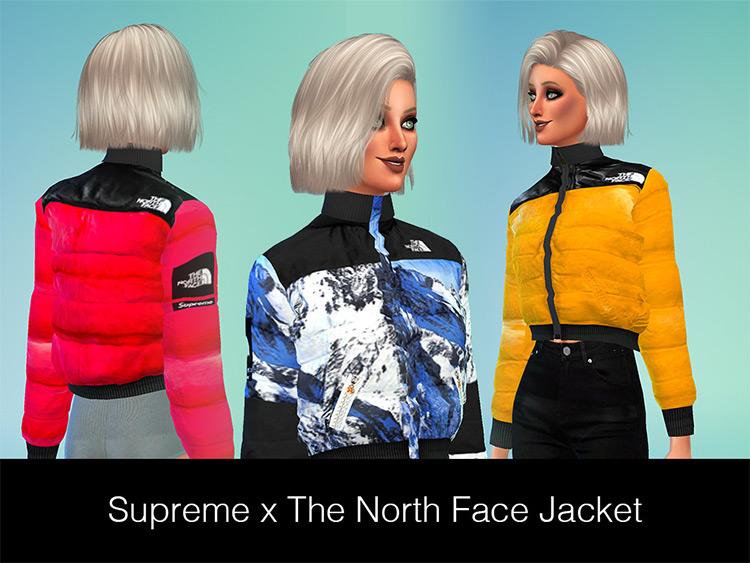 Supreme x The North Face Jacket TS4 CC