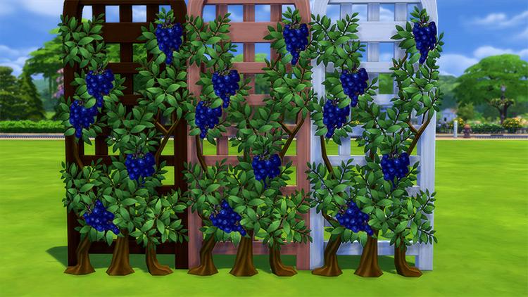 Vines of Prosperity / Sims 4 CC