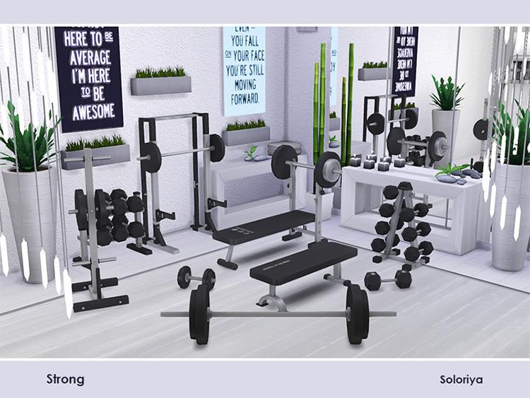 Strong Gym Set / Sims 4 CC