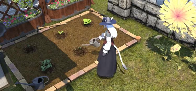 Watering a garden in Final Fantasy XIV