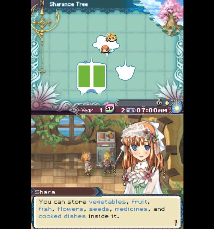 Rune Factory 3 / NDS gameplay screenshot