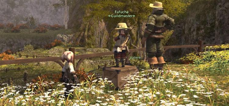 Guildmaster in botanist questline for FFXIV