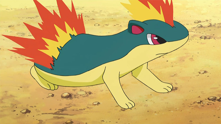 Quilava Pokemon in the anime