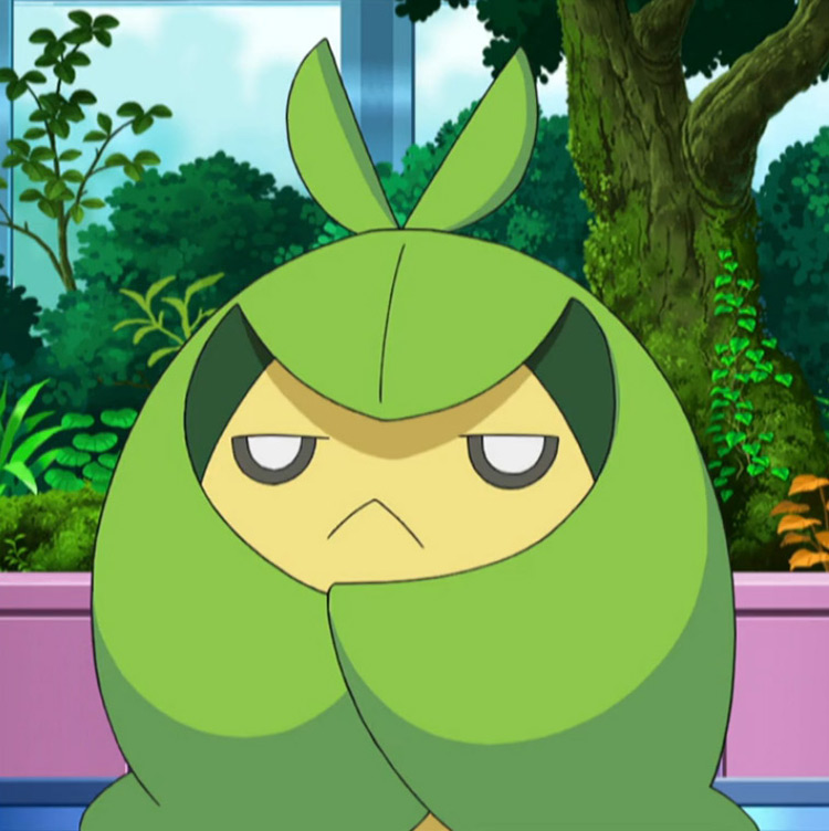 Swadloon Pokemon in the anime