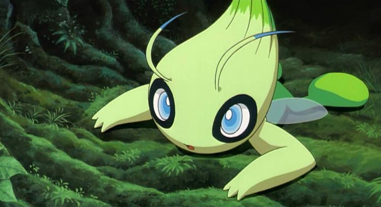 Celebi Pokemon in the anime