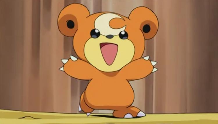 Teddiursa Pokemon in the anime