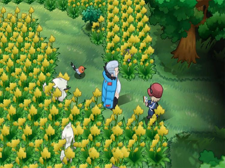 Wulfric / Pokémon X and Y Gym Leader