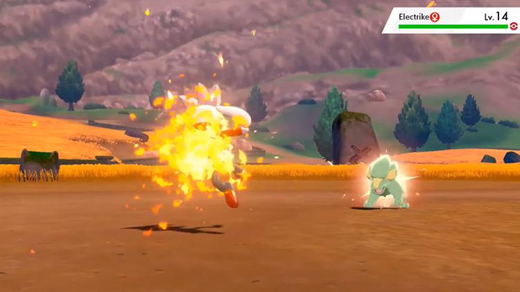 Flame Charge Pokémon move