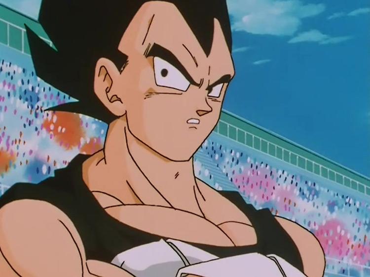 Vegeta in Dragona Ball Z anime