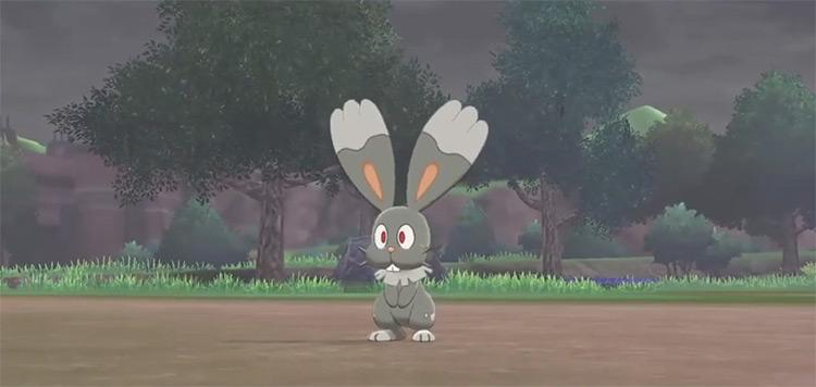 Shiny Bunnelby in Pokémon Sword and Shield