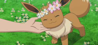 Eevee cute face from anime