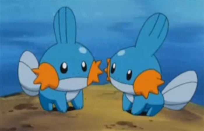Mudkips in the anime