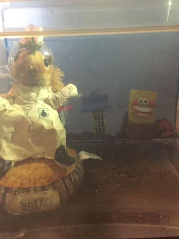 SpongeBob fish tank