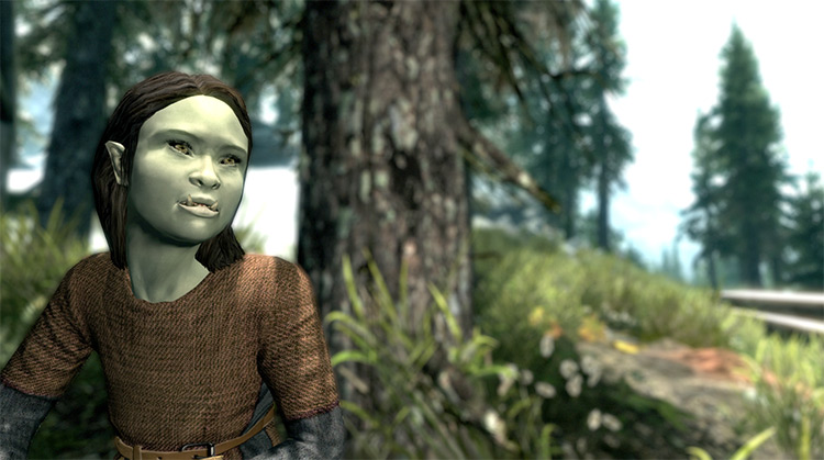 Kidmer Adoptable Elf Children Skyrim Mod preview