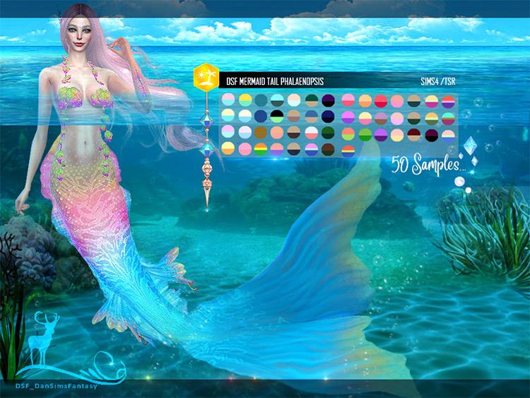 Mermaid Tail Phalaenopsis CC