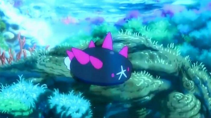 Pyukumuku pokemon anime