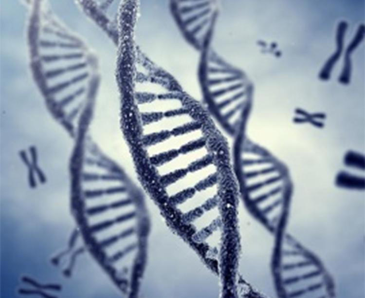 Improved Genetics 2.0 CK2 mod