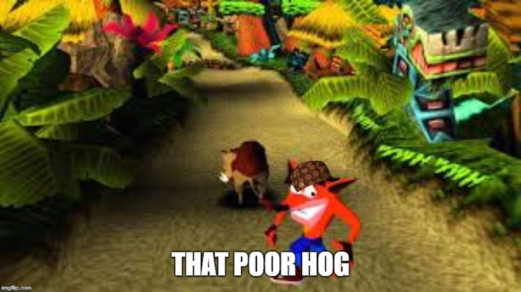That poor hog douchebag Crash Bandicoot meme