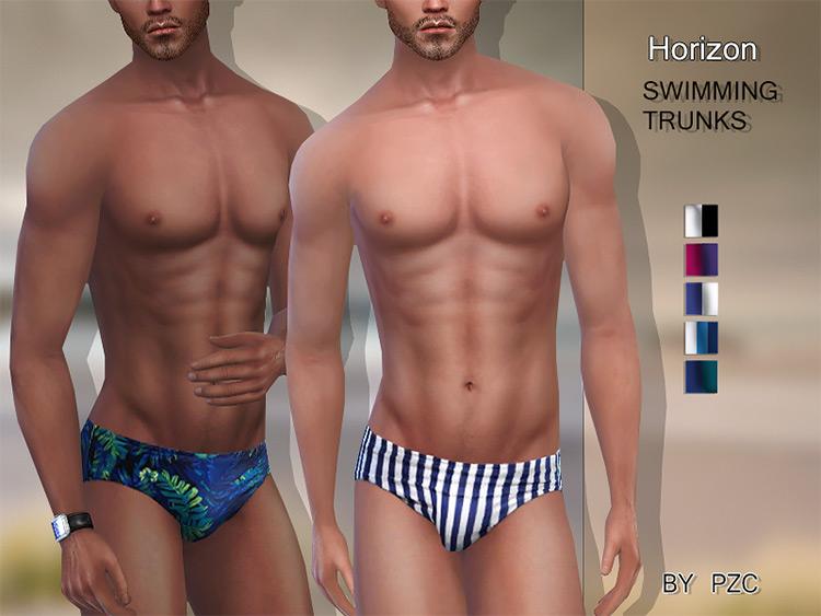 Horizon Swimming Trunks TS4 CC
