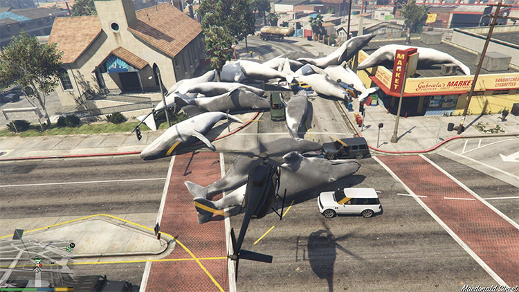 Quick Whale Spawner funny GTA5 mod