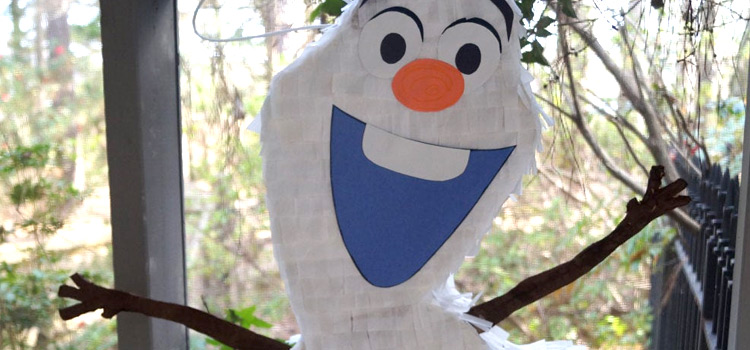 33 DIY Frozen Craft Ideas With Elsa, Olaf, Anna & More
