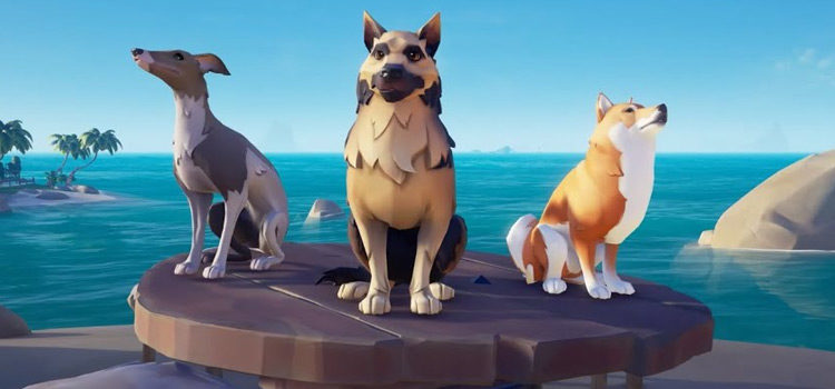 The Best Dogs in Sea Of Thieves (Ranked)