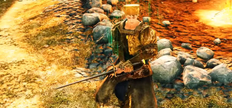 Dark Souls 2: The Best Dex Weapons In The Game (Ranked)