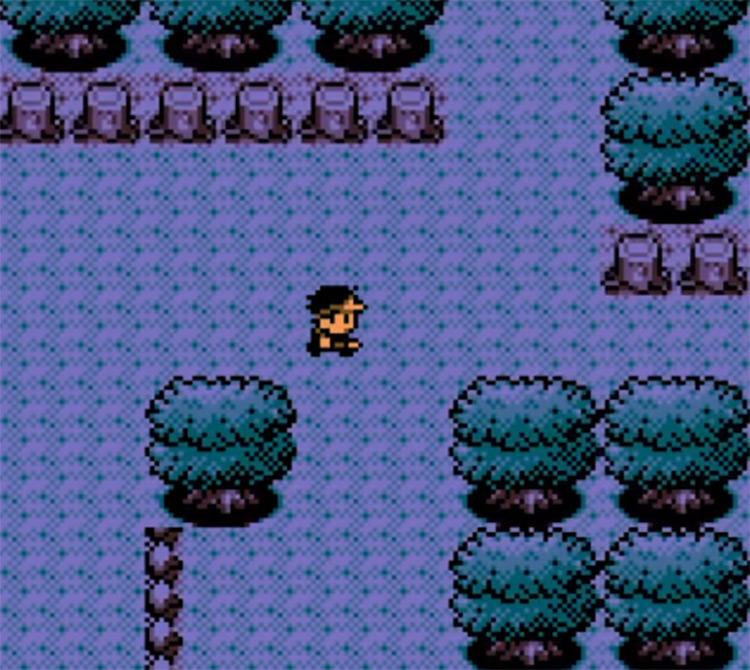 Pokémon Bronze 2 GBC ROM Hack Screenshot