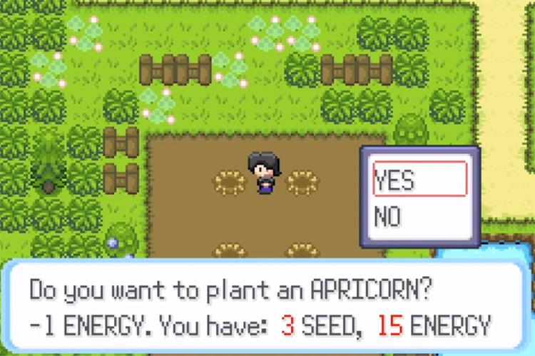 Pokémon HarvestCraft ROM Hack / Planting Apricorn Screenshot
