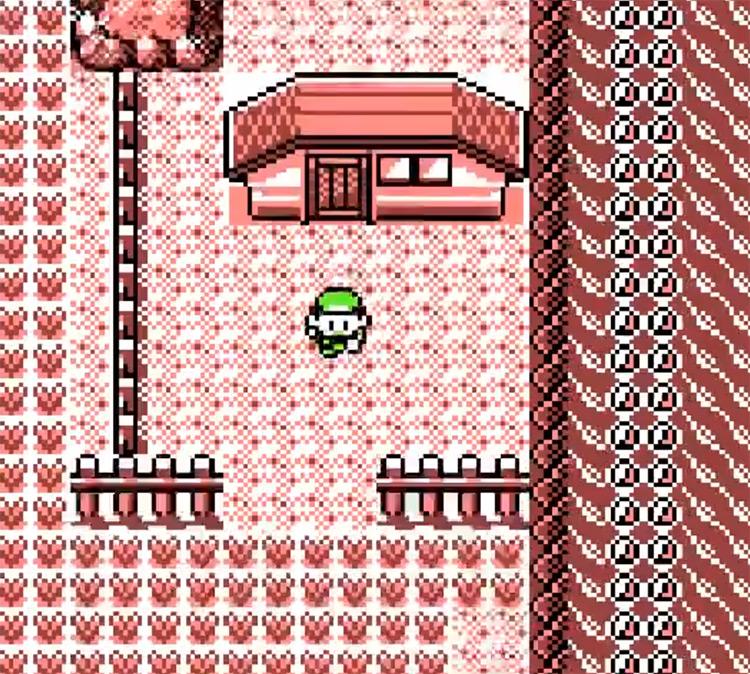 Pokémon Brown Rijon Region ROM Hack